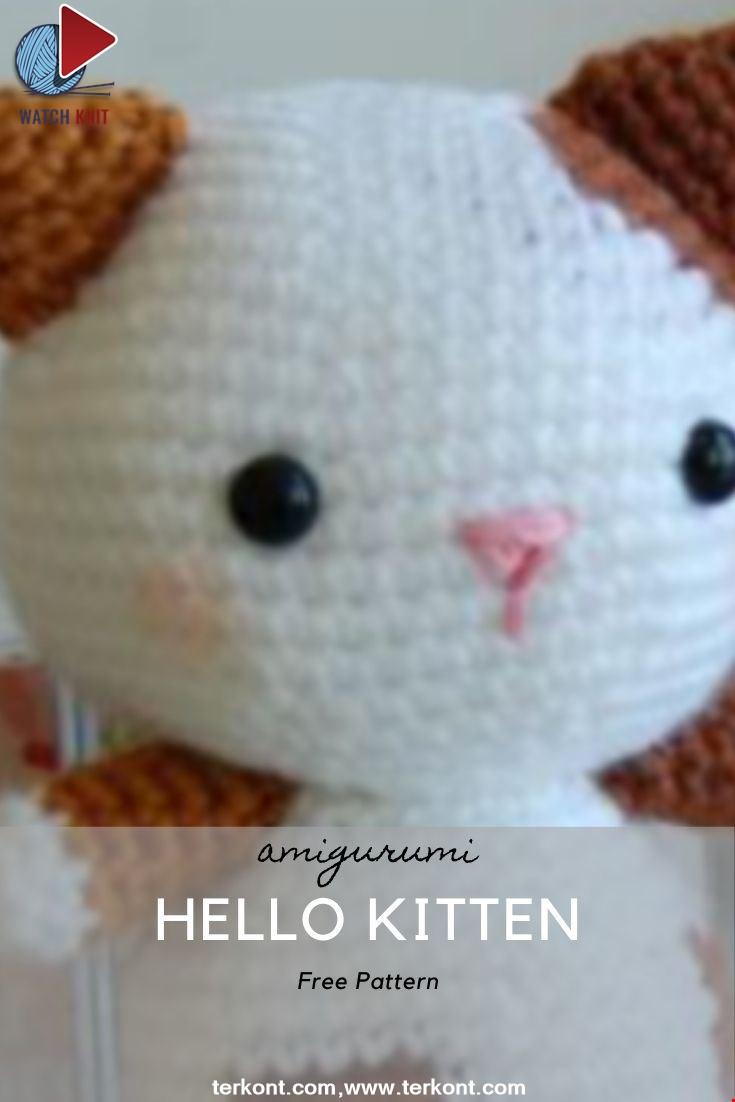 Hello Kitten