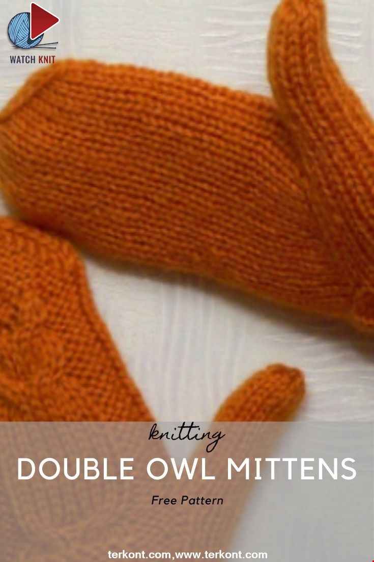 Double Owl Mittens